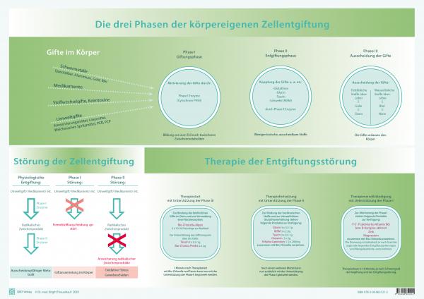 Entgiftungsstörungen und deren Therapie nach Dr. med. Birgitt Theuerkauf
